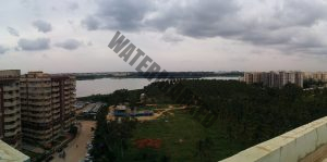Bellandur Lake, southeast of Bangalore