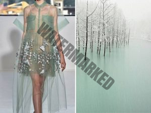 the natural world with dress designs.11