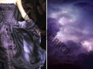 the natural world with dress designs.4