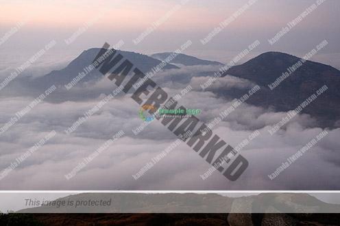 © tushky.com