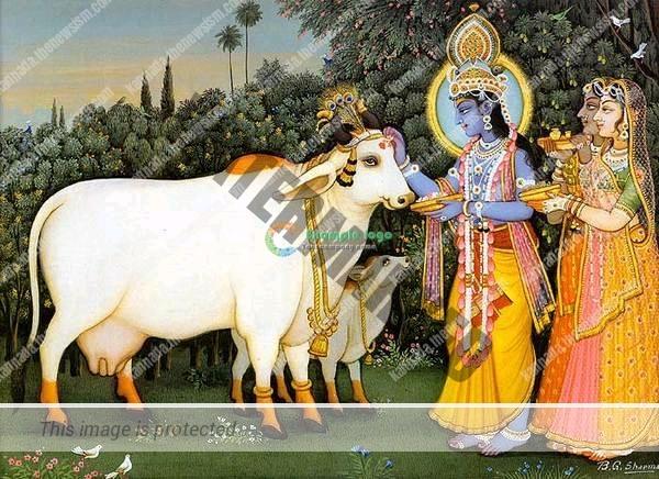 krishna-cows-gopis